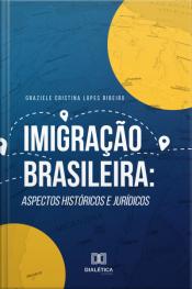 Imigração Brasileira: Aspectos Históricos E Jurídicos