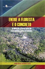 Entre A Floresta E O Concreto: Os Impactos Socioculturais No Povo Indígena Jupaú Em Rondônia