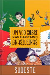 Um voo sobre as capitais brasileiras - Sudeste