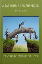 A Sabedoria Das Formigas: Sociologia E Mimercologia